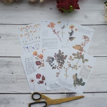 6 sheets/lot 10.5*12.8cm  DIY Flower specimen pattern paper sticker wrapping creative craft handmade scrapbooking decor