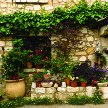 Laeacco Houses Stone Wall Flowers Photography Backgrounds Customized Photographic Backdrops For Photo Studio