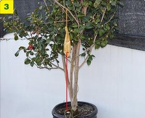 Image 3 - 3 ピース/セット 1500 ミリリットルのホーム花植物点滴灌漑システム輸液バッグ木注入キットマイクロ灌漑ガーデン供給