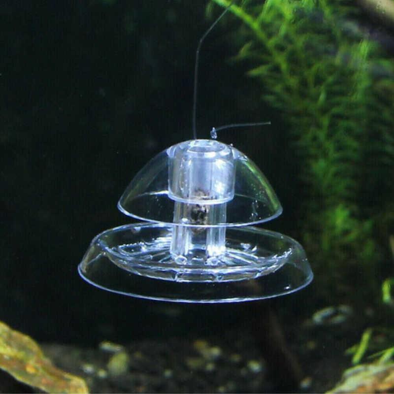 Tanque de Peixes de aquário Planta De Plástico Transparente Caixa de Pragas de Plantas Planarian Pegar Sanguessuga Catcher Armadilha Caracol Ambiente Clean Tool Novo