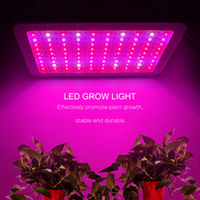Full Spectrum 1000W 600W 400W 200W 100W LED Grow Light AC 85-265V Growth Lamp For Hydroponics and Indoor Plants Flowers
