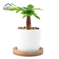WITUSE White Column Flower Pot Ceramic Succulent Plant Pot Decorative Desktop Fern Plants Clay Garden Pot