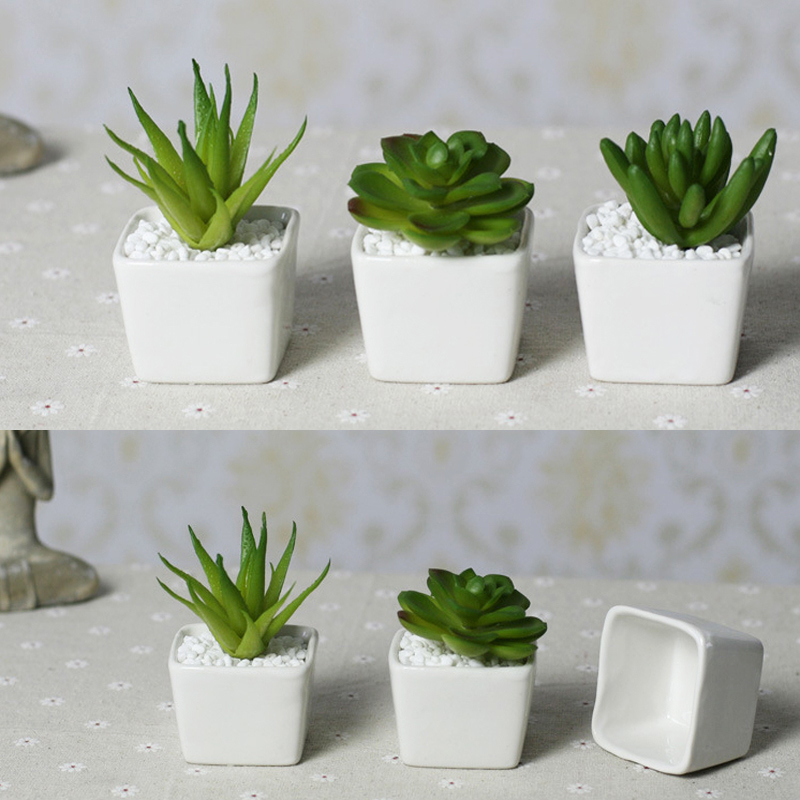 Top price Free shipping Mini indoor ceramic pots plant white ...