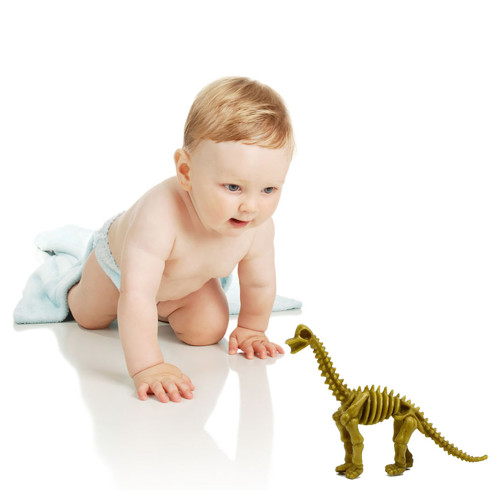 Toys & Hobbies Dinosaurs Fossil Blokcs 1pcs Educational Science Toy Simulated Shaking Head Dinosaur Model Toy Deformation D300115 Easy And Simple To Handle Biology