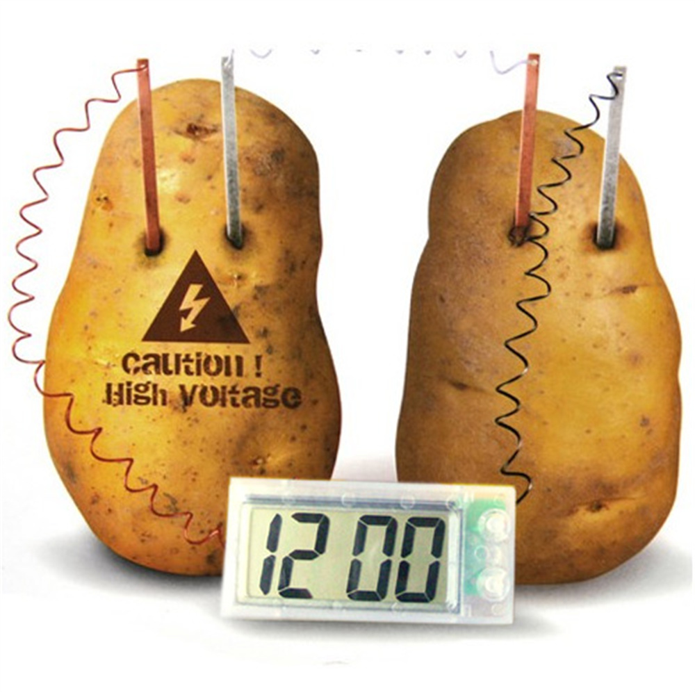 Potato Clock Science Project Experiment Kit Kids DIY Home School Lab Gifts Toy clock table model teacher demonstration with primary school mathematics science and education equipment three needle linkage
