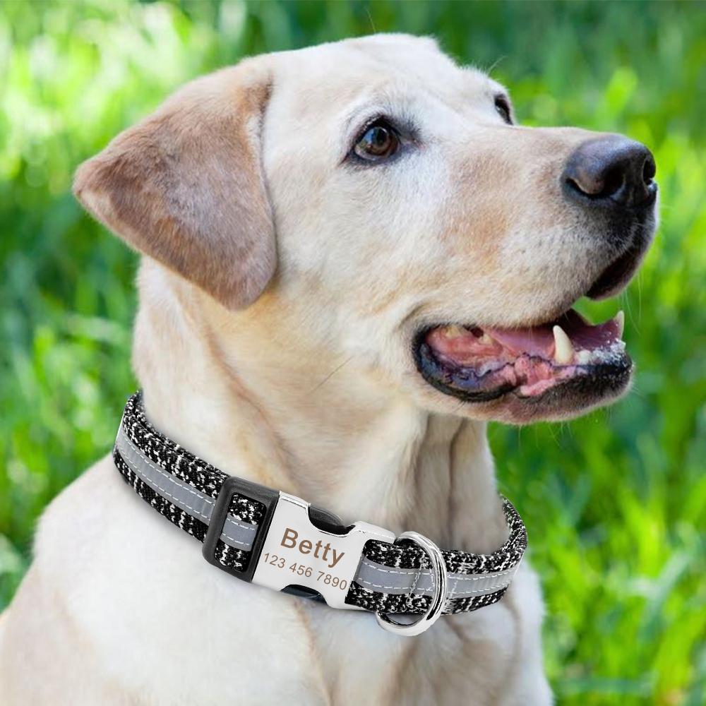 Collar de perro personalizado reflectante 12