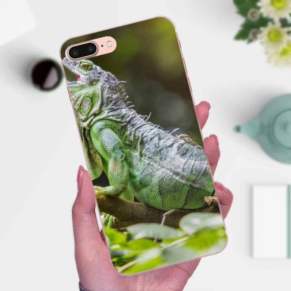 Животное Игуана Хамелеон ящерица мягкая ТПУ кожа телефона для Apple IPhone X XS Max XR 4 4s 5 5C 5S SE 6 6 S 7 8 Plus