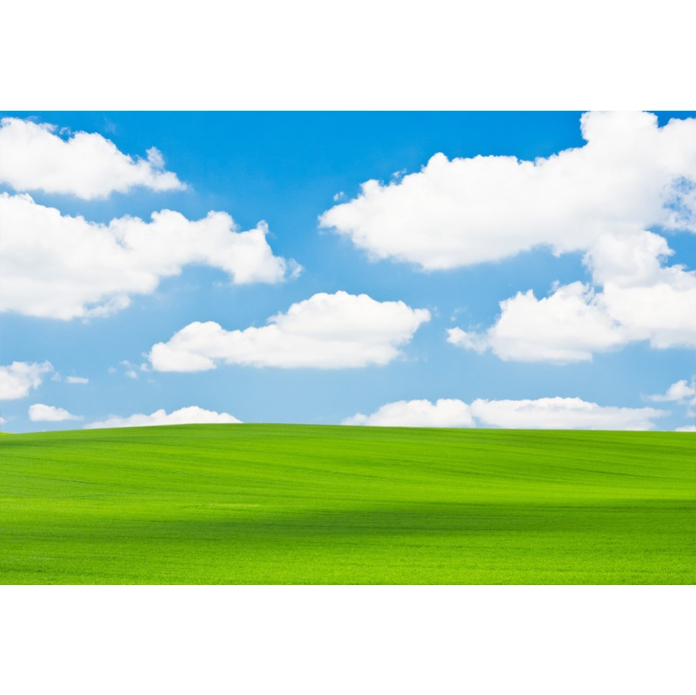 Laeacco Langit Biru, Awan Putih, Padang Rumput Baby Shower Pemandangan Alam  Fotografi Latar Belakang Fotografi Latar Belakang Untuk Foto Studio  Background  - AliExpress