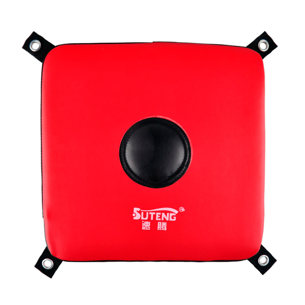 Suten Brand Faux Leather Wall Target Solid Sanda Fighting Sandbag 30*30*5cm Wall Boxing Training Equipment Target 5cm Thick