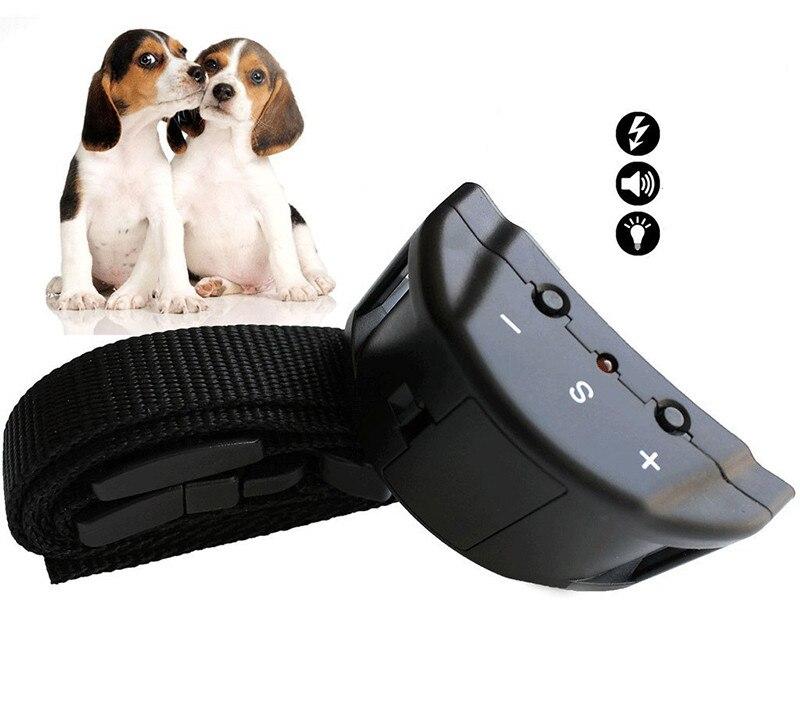 electric dog collar (8)