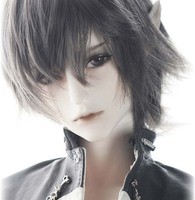 Wolf The Knight BJD Doll 1/3 resin figures toy