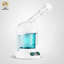 Ion facial abur ion-acasă singur pulverizator de căldură albire facială ionic abur sauna spa spașa de îngrijire a pielii nano spray
