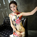 Women's Long Chinese Style Qipao Cheongsam Party Dress
