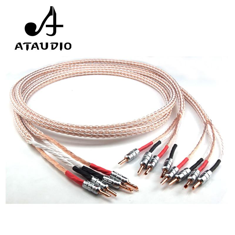 ATAUDIO 12TC Hifi Speaker Cable With 2 Banana Plug to 4 Banana Jack Hi end OCC Speaker Wire