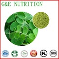 Top selling 100% pure moringa leaf extract