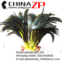 CHINAZP Factory Retail and Wholesale 100pieces/lot 30~35cm(12~14inch) Length Unique Dyed Yellow and Natural Rooster Tail Feather