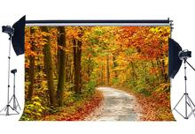 Autumn Backdrop Jungle Forest Backdrops Rustic Dirt Road Highway Background