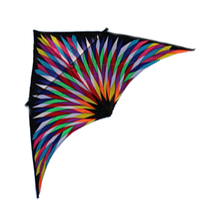New Arrive High Quality 6 Square Huge Nylon Delta Special Kite Easy To Fly