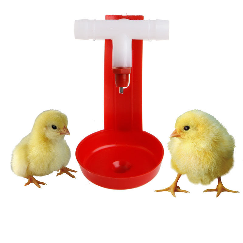 1Pcs New Automatic Bird Coop Feed Poultry Chicken Fowl Drinker Water Drinking Cups Hanging Chicken For Beauty Tool ...
