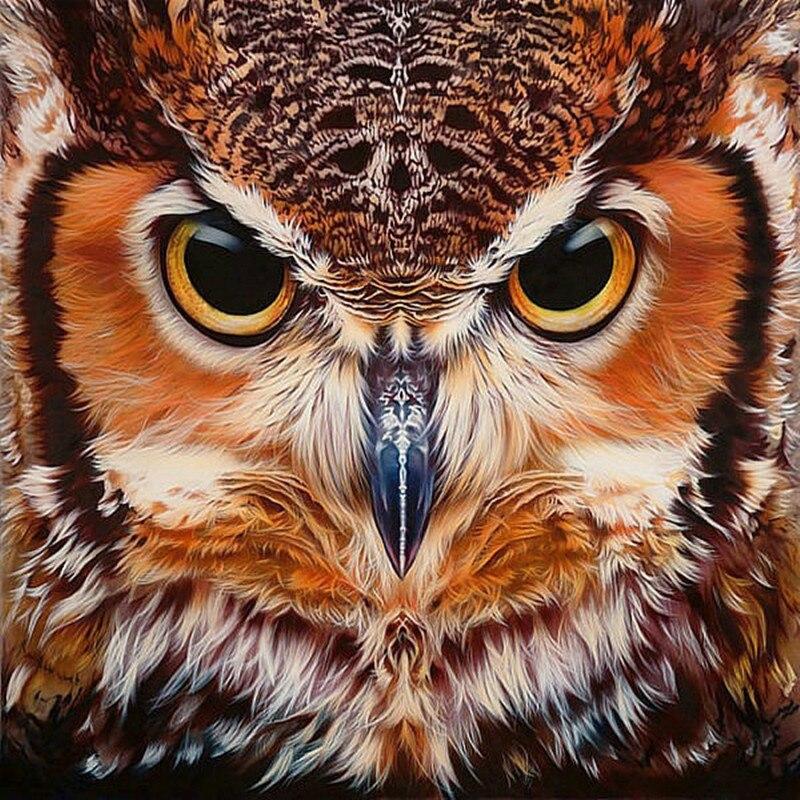 """100% Full 5D Diy Daimond Painting """"OWL Face"""" 3D Diamond Painting Full Round Rhinestones Diamant Painting Embroidery Animal Decor"""