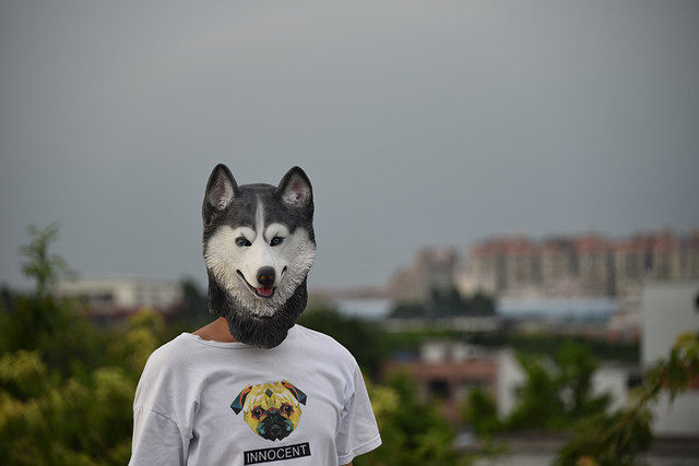 halloween siberian husky dog latex mask novelty costume party fancy dress animal masks