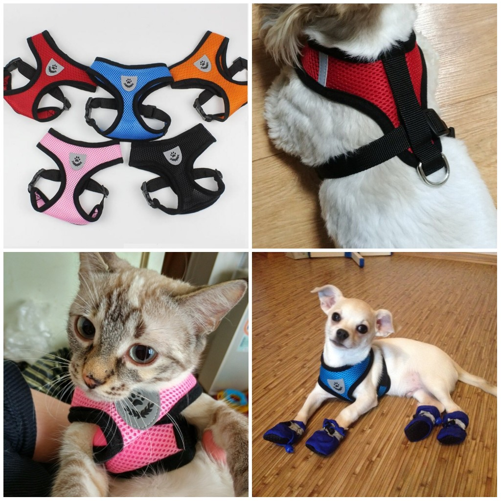 Breathable Mesh Small Dogs Pet Harness Set Reflective logo Cat Vest Harness For Chihuahua Cat Dog Puppy S M L