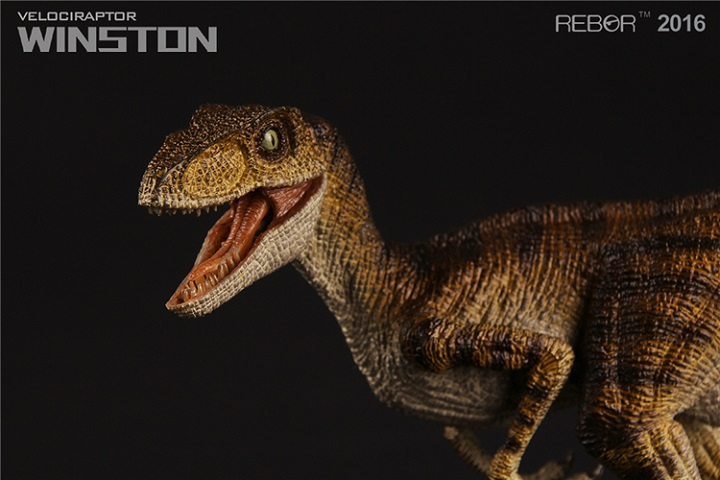 Mouth Can Open Rapator Dinosaurs Toy Classic Toys For Boys Children Birthday Velociraptor Winston Animal Model