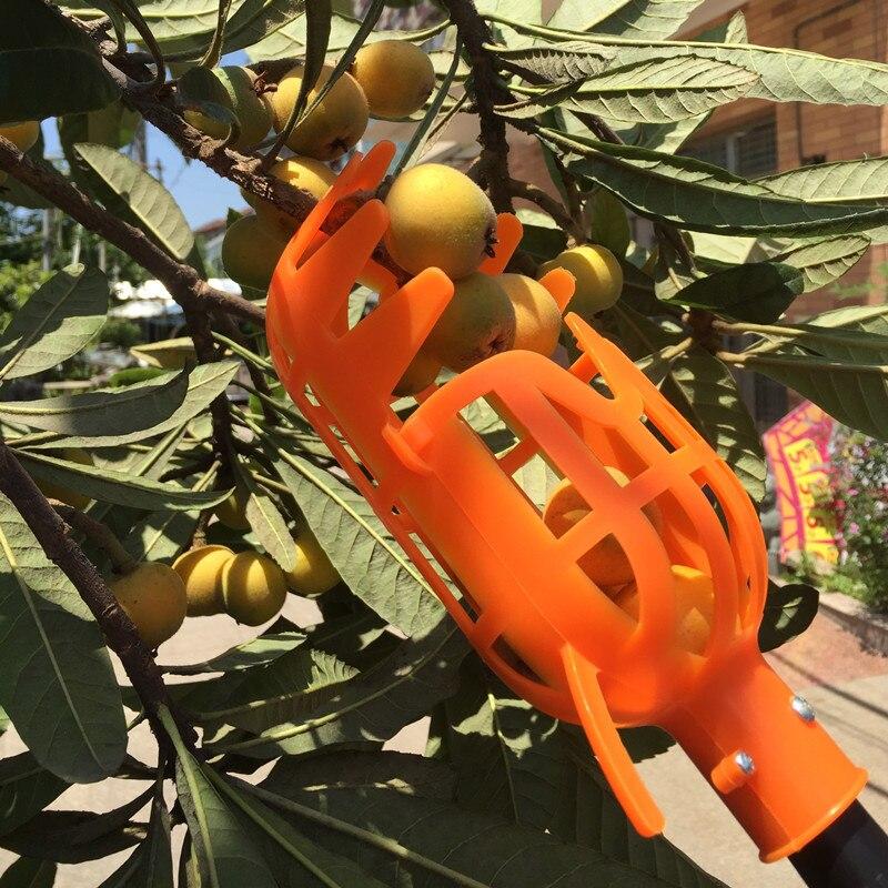 PROSTORMER Fruto Selecionador de Alta Altitude No pólo 1 Peças Ferramenta Picking Selecionador sem Pole Apanhador de Frutas de Plástico Jardim