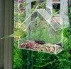 Window Bird Feeders CLEAR GLASS WINDOW VIEWING BIRD FEEDER HOTEL TABLE SEED PEANUT HANGING SUCTION