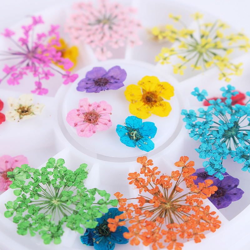 1 Box Mixed Dried Flower 3D Nail Art s