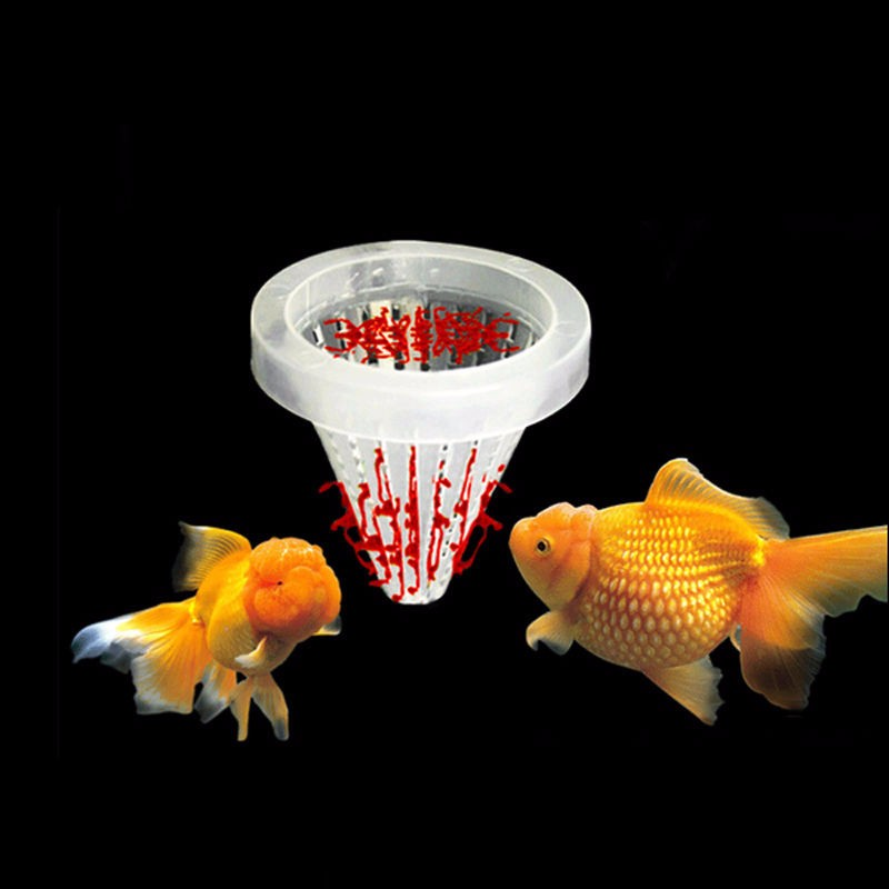 Nice Hot Sale Aquarium Fish Food Bloodworm Feeder Fish Tank Live Worm Basket  Feeder Brine Shrimp Fish Food Feeding Tool With Suck Cup In Feeders From  Home ...