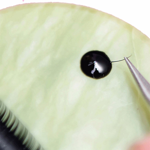 Image 5 - GLESUM Fast Dry 1 2 Sec 5 Bottle Eyelash Extension Glue 5ml Clear Black Lashes Mink Eyelashes Glue cosmetic Free Shipping