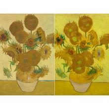 Hand painted Canvas art Vincent Van Gogh The Sunflowers Still life flowers oil paintings reproduction modern picture wall decor
