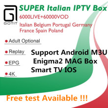 GOTiT Italy IPTV M3U Subscription 6000+Live Super Italia IPTV Germany Italian Albania Turkey XXX for Android Enigma2 Smart TV(China)