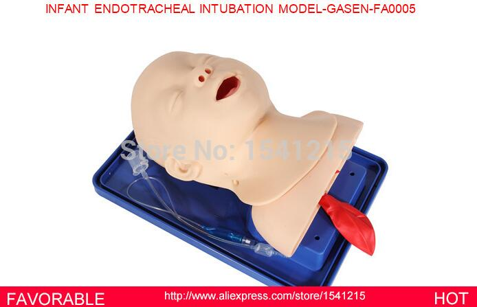 AIRWAY MANAGEMENT MODEL, ENDOTRACHEAL INTUBATION TRAINER MANIKIN,INFANT ENDOTRACHEAL INTUBATION MODEL-GASEN-FAM0005 iso economic newborn baby intubation training model intubation trainer