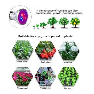 Image 4 - Wysoka dioda led dużej mocy oświetlenie do uprawy E27 pełne spektrum Fitolampy kryty rosną lampy dla roślin kwiaty nasiona rosną pudełko w kształcie namiotu wymienić światło słoneczne