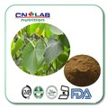 composure naturel Powdered Kava Extract 1kg free shipping