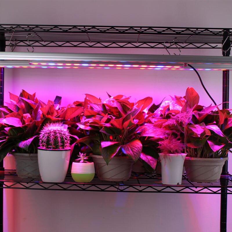 Luzes LED crescimento plantas