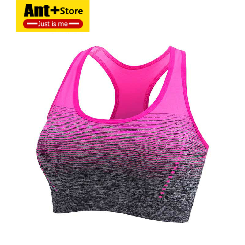 High Stretch Sports Bra  Breathable Top Fitness Women Padded for Running Yoga Gym Seamless Crop Bra Gradient Sport Bra