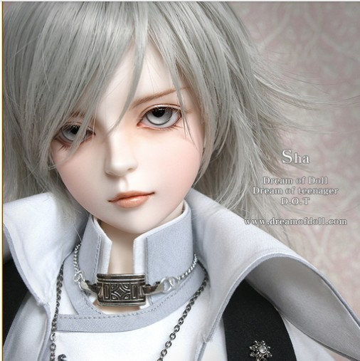 Free Shipping dod sha sd / bjd doll doll soom et Doll (including make up and eye)-in Dolls from