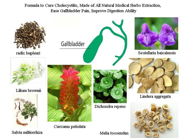 Формула для Лечения Холецистит, сделано из Всех Природных Лекарственных Трав Добычи, простота Желчного Пузыря Боли, улучшения Пищеварения Способности