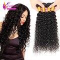 Brazilian Virgin Hair Kinky Curly 4 Bundles Kinky Curly Virgin Hair Grade 7A Human Hair Weave Cheap Brazilian Curly Hair