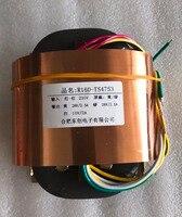 28V 2.5A 28V 2.5A 10V 2A R Core Transformer 200VA R160 custom transformer 220V copper shield Power amplifier