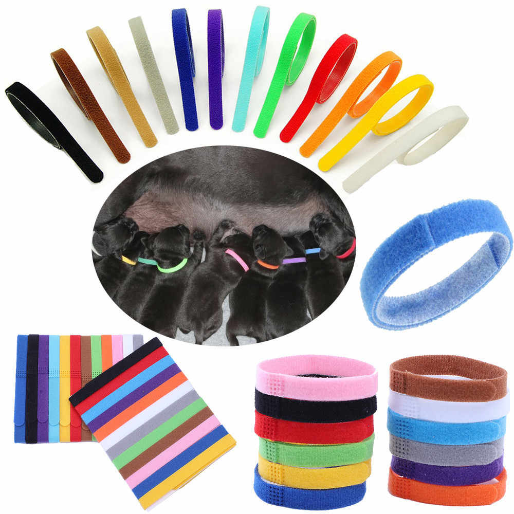 12 Colors Identification ID Collars Bands Whelp Puppy Kitten Dog Pet Cat 8Z