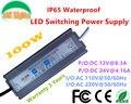 100 W IP65 À Prova D' Água LED Fonte de Alimentação 12 V 24 V 4.16A Adaptador LED Driver 8.3A Subaquática luz Subterrânea 110 V 220 V CE