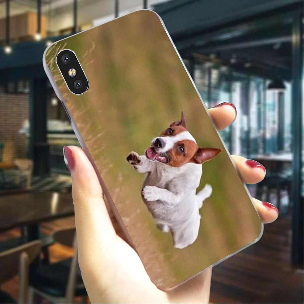 Cute Jack Russell Terrier Running Dog iPhone 11 case