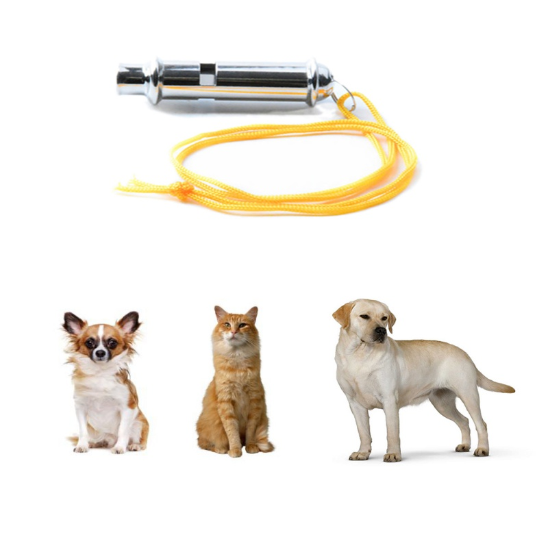 Pet Dog Training Whistles Ultrasonic Sound Whistle Obedience Sound Eagles Doves Portable necklace keyring pet product Z in Dog Whistles from Home Garden