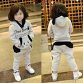 Kids fall and winter clothes for girls boys children plus thick cashmere sweater piece track suit 2-3-4-5-6 years