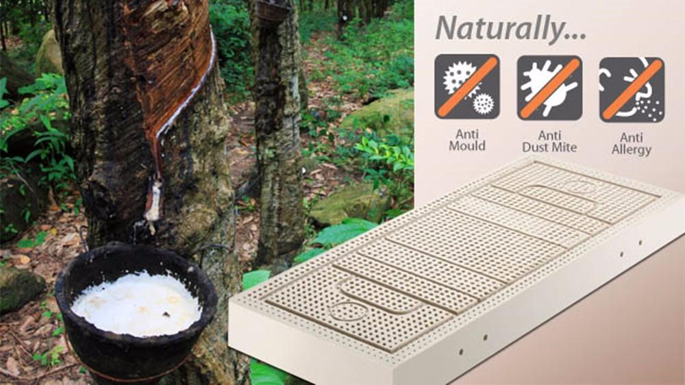 10 см толщина king size семь зоны плесень 100% натуральный латекс матрас/топпер запечатанный белый внутренняя крышка midium мягкий