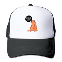 לשני המינים כובע בייסבול Snapback כובע נהג משאית רשת עצלן אח צינה